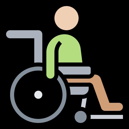 Lica-sa-invaliditetom